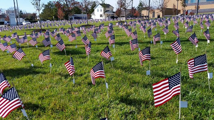 About 1,200 miniature American flags covered the lawn at Shore Medical Center in a colorful salute to veterans.